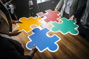 Samenwerken met de Blauwe Krokodil betekent invulling van social retun